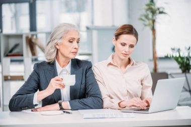 businesswomen discussing project