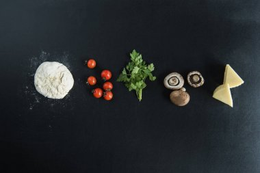 Dough with ingredients for preparing pizza
