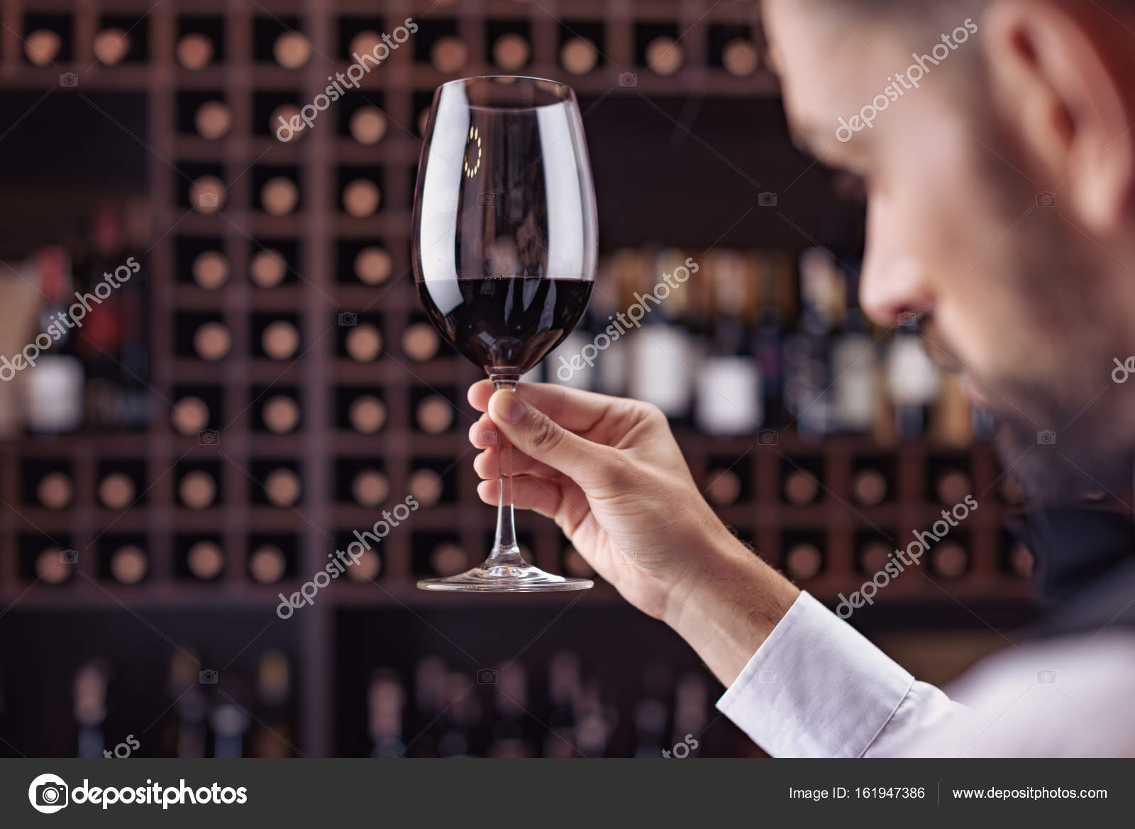 kaamelott degustation vin
