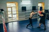 Photo boxers training on boxing ring