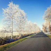 Parco di Frisia orientale