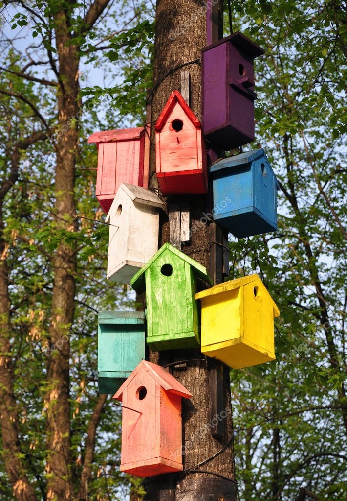 Colorful birdhouses. A few pieces