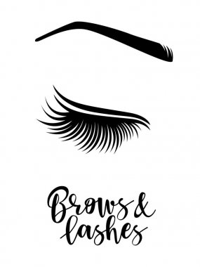 Vector illustration of brows and lashes