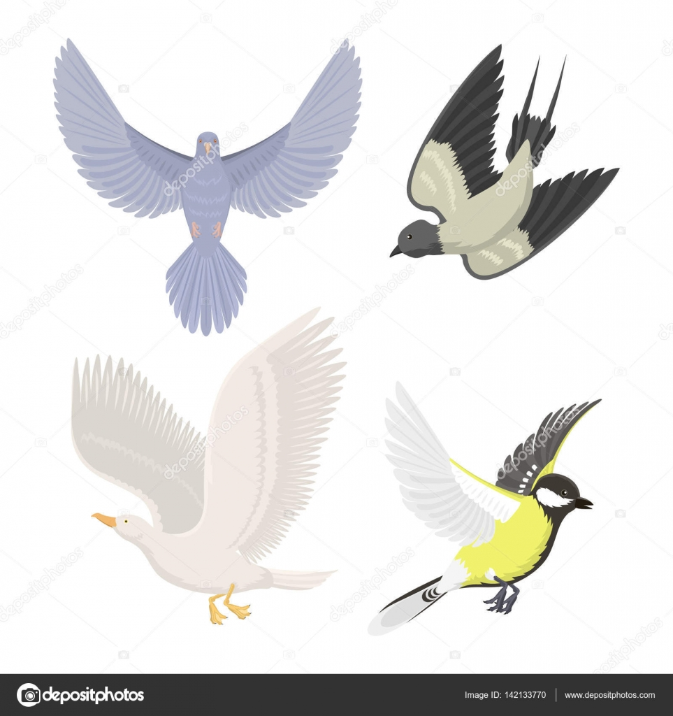 Set of sketches of flying swallows stock vector illustration - Set Of Different Flying Birds Vector Illustration Stock Vector 142133770