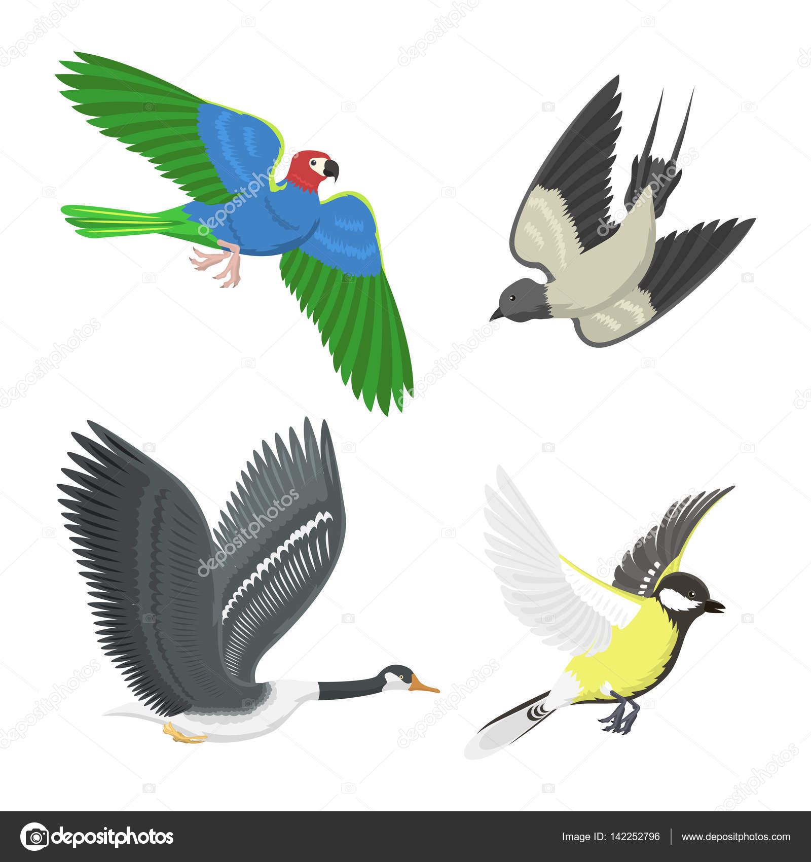 Set of sketches of flying swallows stock vector illustration - Set Of Different Flying Birds Vector Illustration Stock Vector 142252796