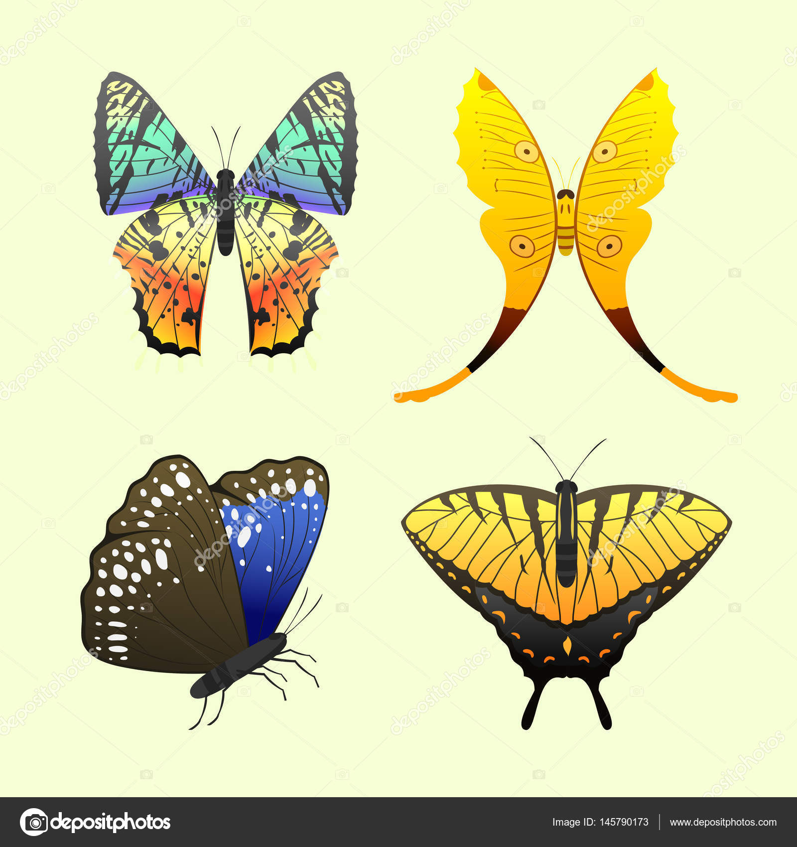 Colorful butterflies with abstract decorative pattern summer free ...