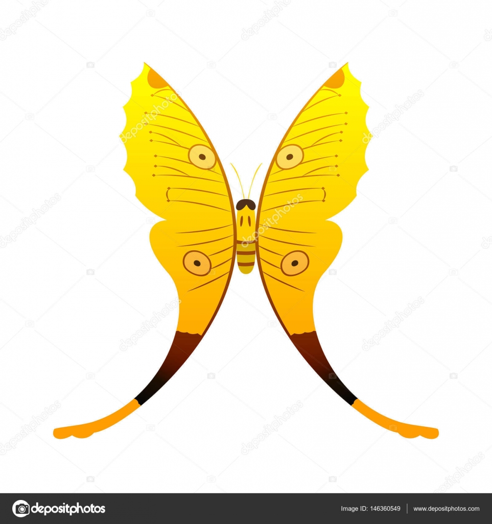 Colorful yellow butterfly with abstract decorative pattern summer ...