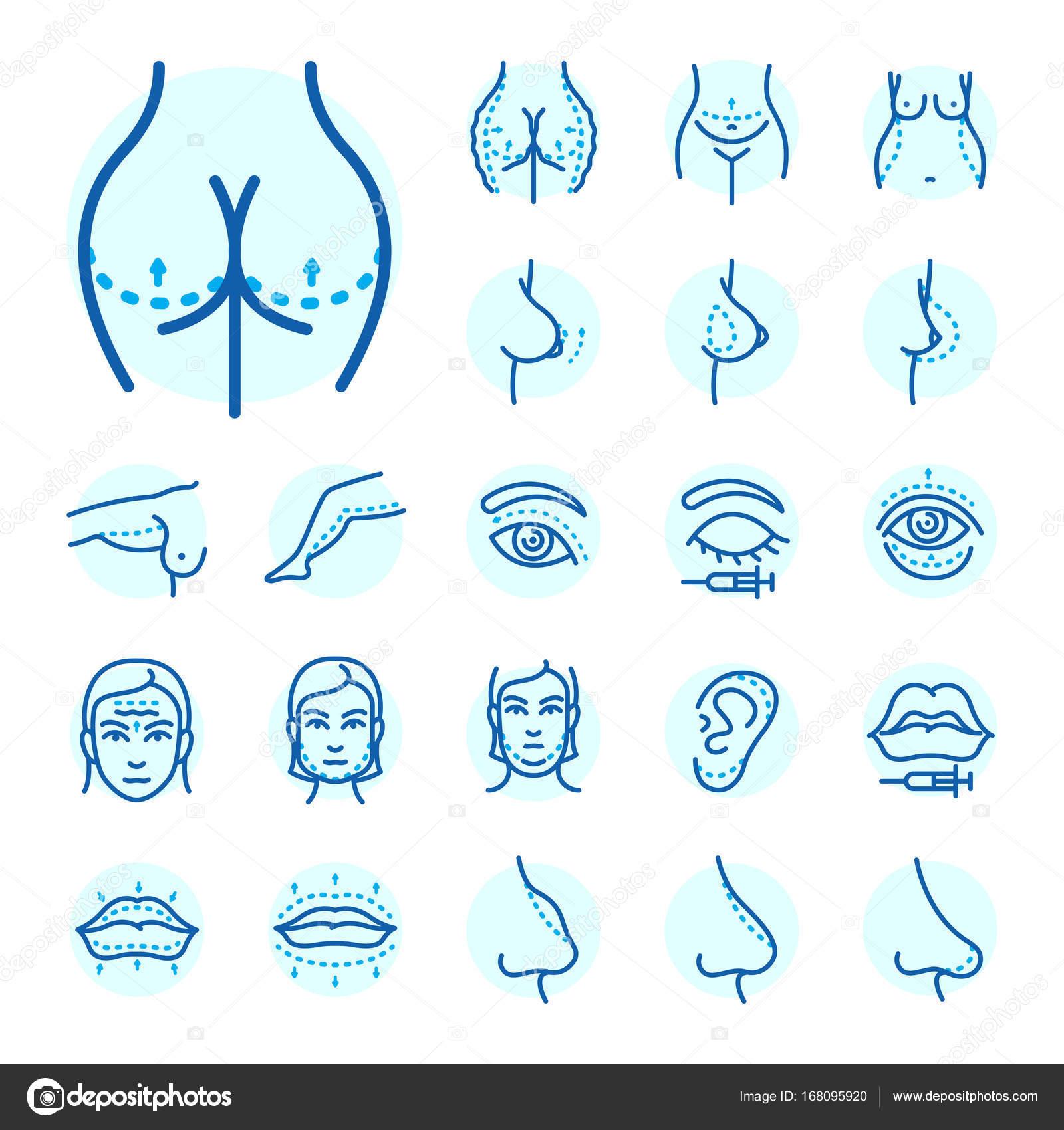 Partes del cuerpo cirugía plástica cara corrección infografía los ...