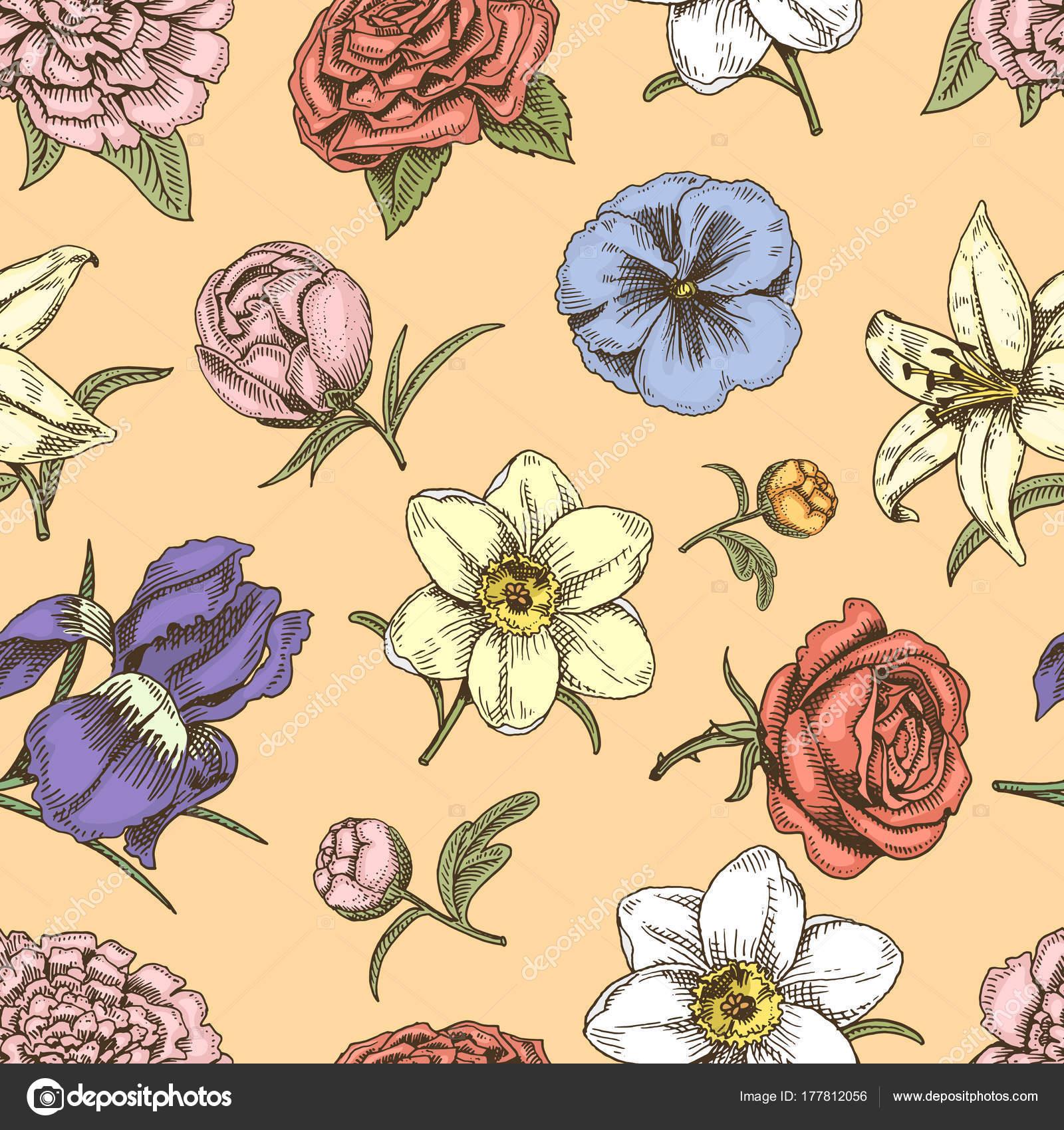 Bouquet Blumen Vintage Vektor Hand Gezeichnete Skizze Stil Knospe