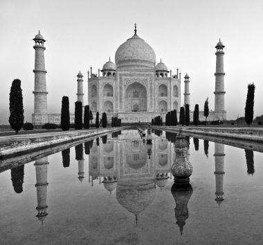 Taj Mahal in India stock vector