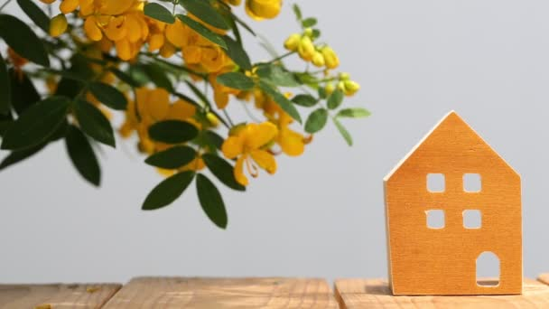 miniature model of house with blossom