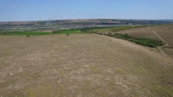Aerial view of vineyards, Danube river and windmills on background