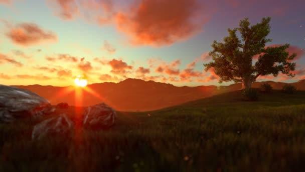 Strom života na zelené louce, krásný západ slunce