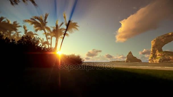 Tropický ostrov s palmovými stromy a skály v oceánu na východu, posouvání