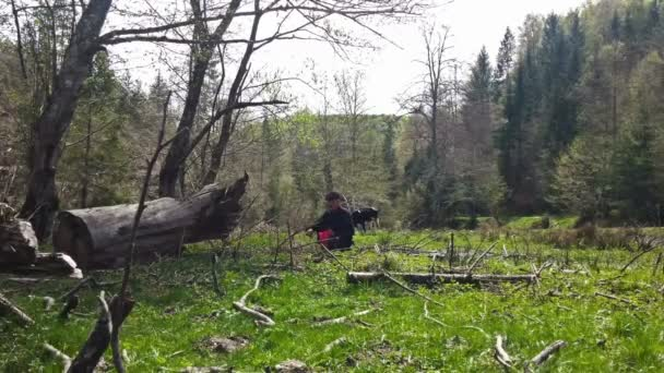 Muž výdeje kopřivy na zelené louce, malebná krajina, kráva na pozadí