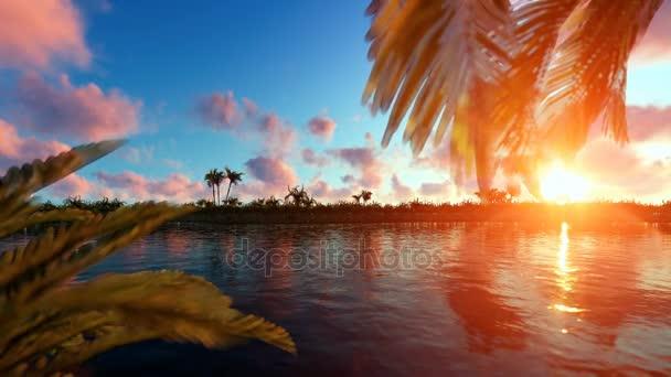 Ostrov dlaně při západu slunce s letadly předávání