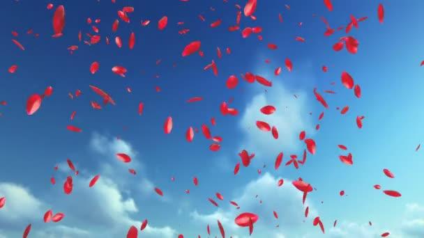 Rose Petals létání, proti modré obloze