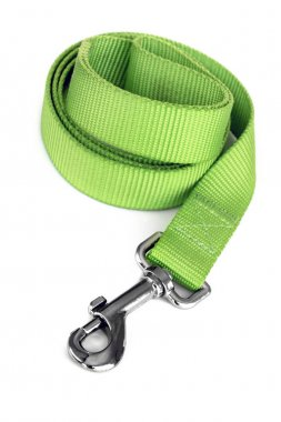 Green Dog Leash Isolated on White