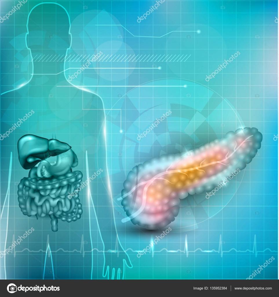 Bauchspeicheldrüse Anatomie und Behandlung Konzept, menschliche ...