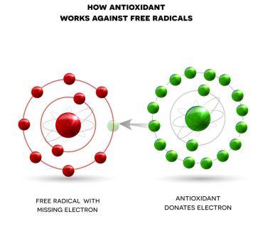 How antioxidant works