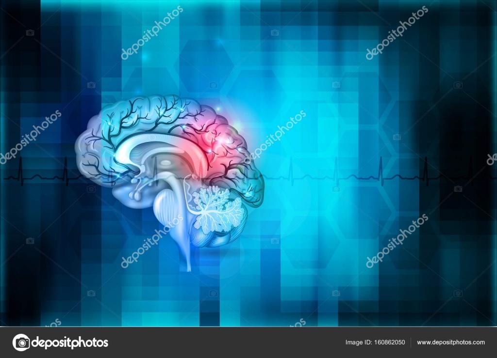 Menschliche Gehirn abstrakter blauer Hintergrund — Stockvektor ...