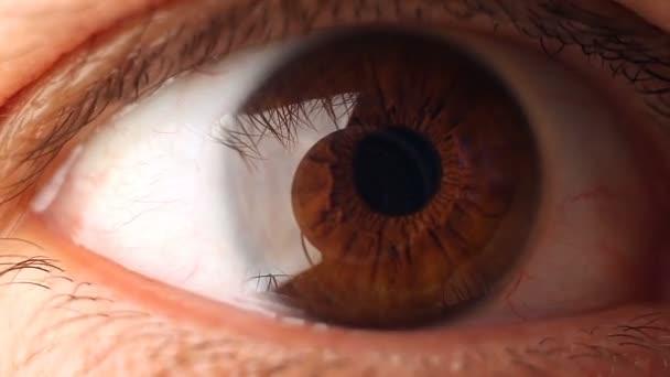Makroaufnahme eines männlichen Auges.