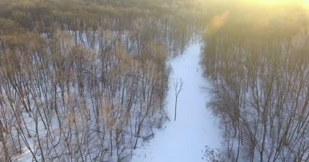 Letecký pohled. Let nad krásné zimní řeky a lesa. Příroda v zimě. Panorama krajiny. Ukrajina