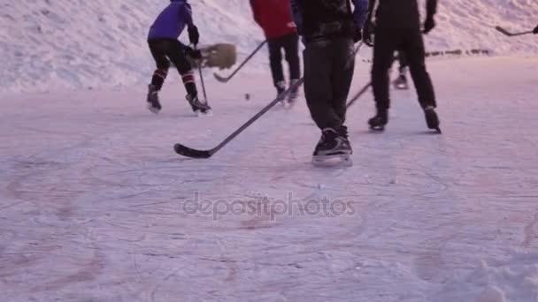 Skupina lidí hraje lední hokej
