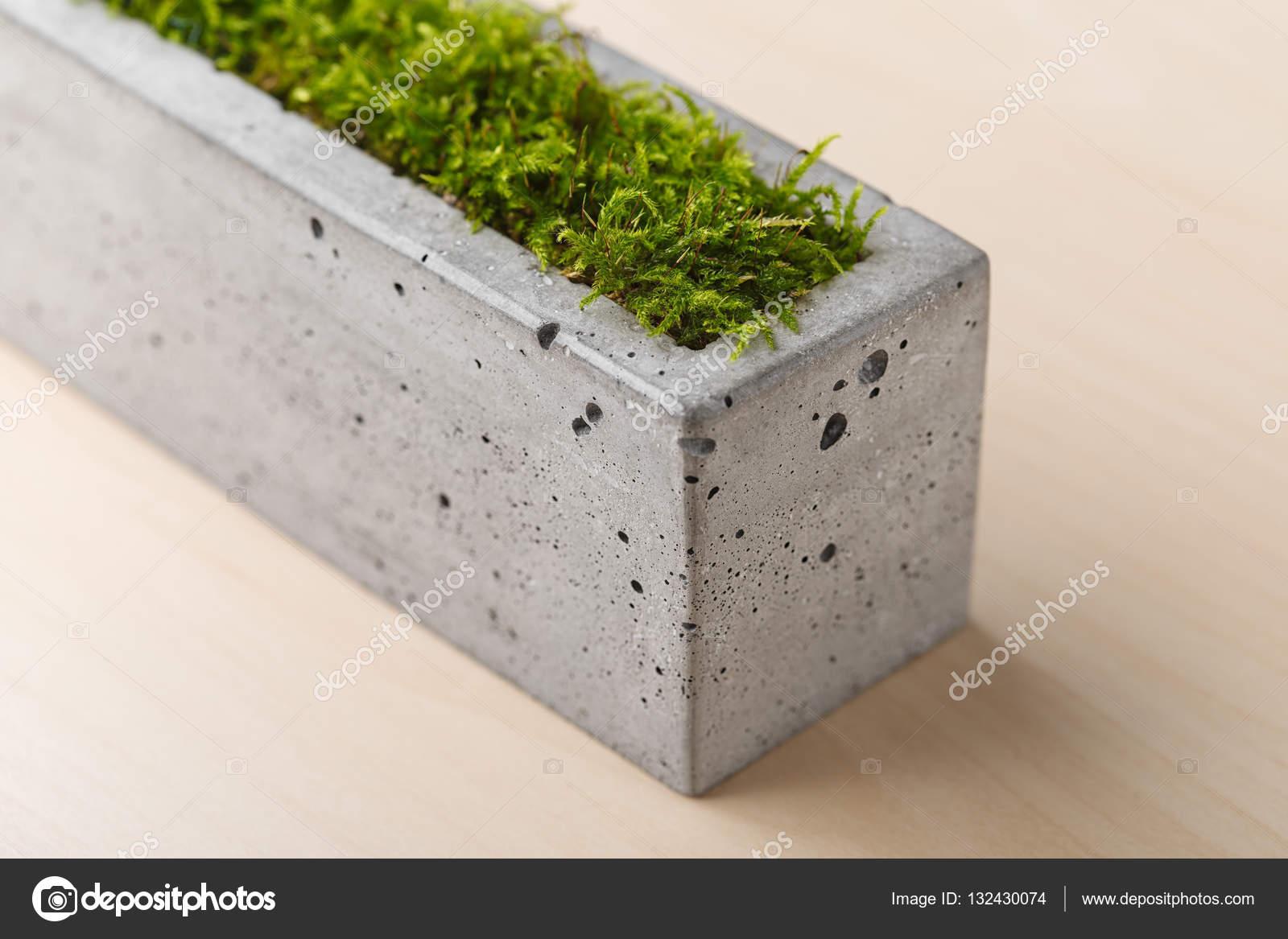 stilvolle beton pflanzgefäße mit grünem moos — stockfoto