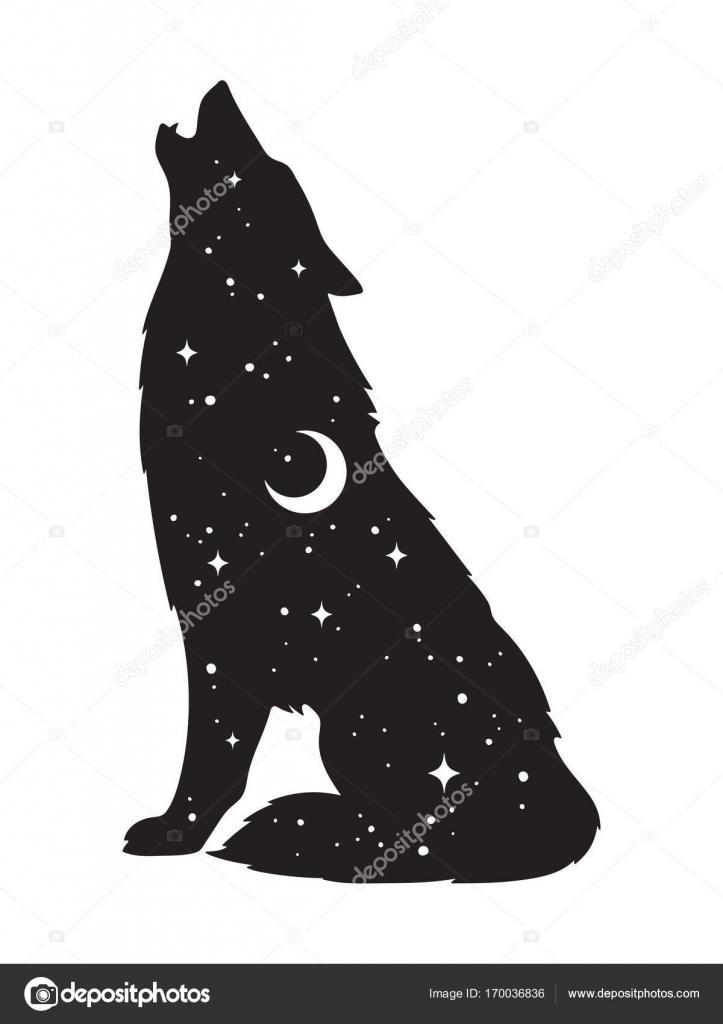 Silueta Lobo Dibujo Silueta De Lobo Con La Luna Y Las Estrellas