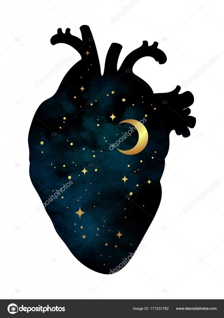 Silhouette Du Cœur De L Homme Avec L Univers A L Interieur