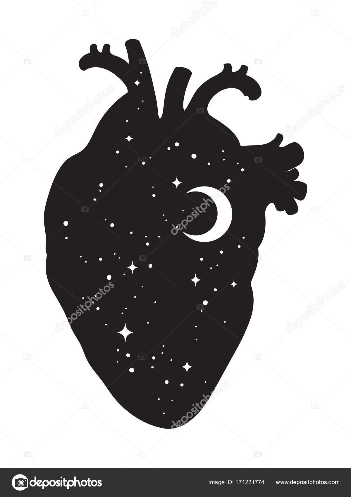 Silueta del corazón humano con el universo interior. Luna y las ...