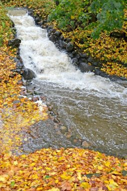 Falls on a stream Air in autumn day. Kaliningrad