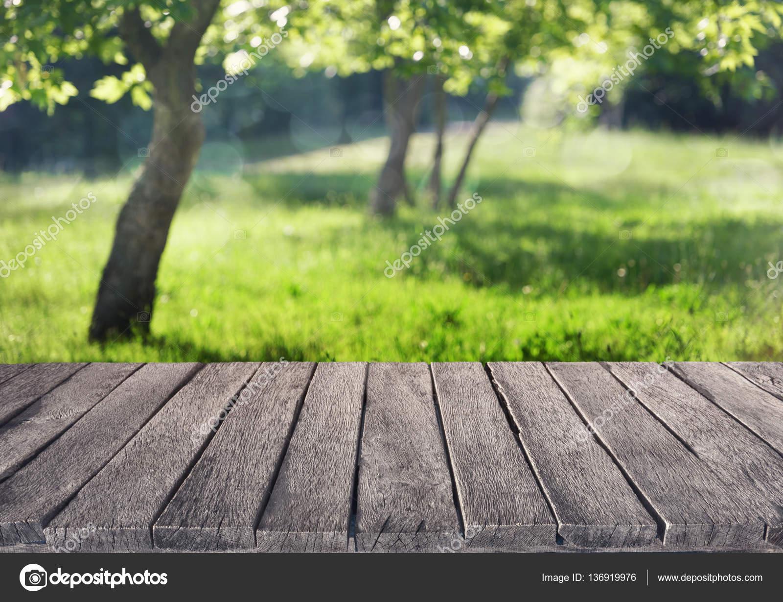 Fußboden Im Sommergarten ~ Ein sommergarten u stockfoto varuna