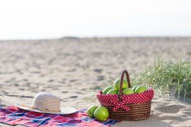 picnic at the beach on holiday