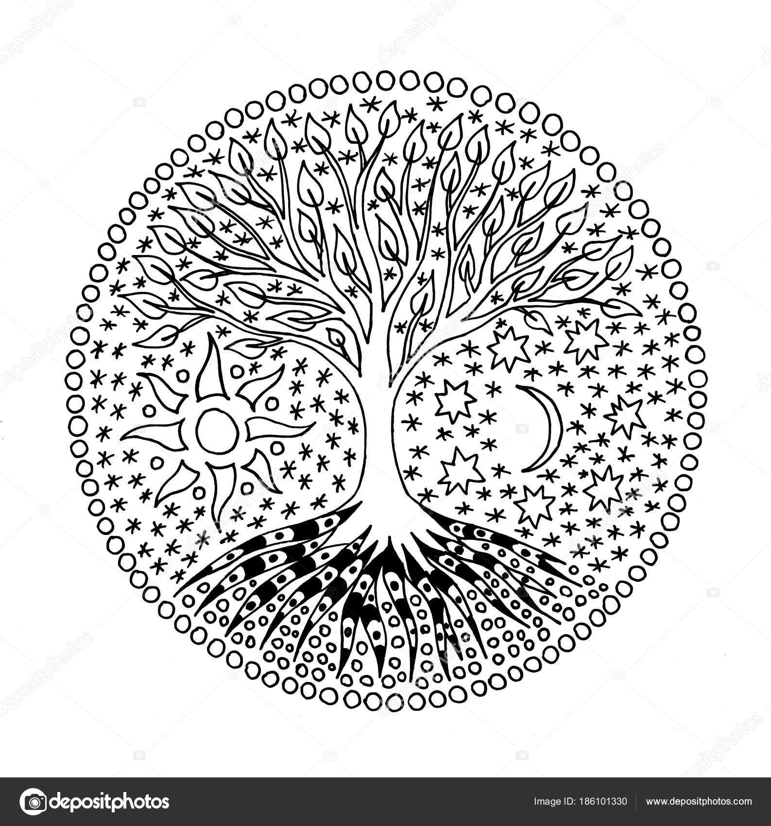 Dibujos Arbol De La Vida Blanco Y Negro árbol Vida Círculo
