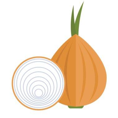 piece of fresh onion