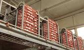Fényképek Egg factory... gépsor