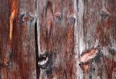 Vecchio di legno astratto