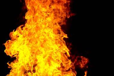 """Картина, постер, плакат, фотообои """"red fire flame on black background"""", артикул 152432168"""