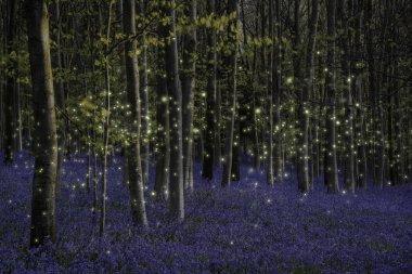 Beautiful fantasy image of fireflies glowing in dusk landscape i