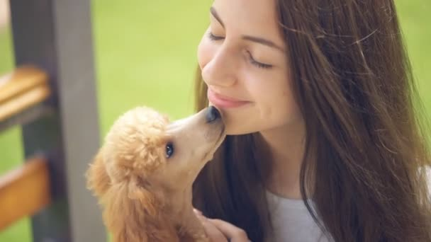 baise en douceur baise sa chienne