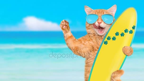 Cinemagraph - krásné surfař kočka nosí sluneční brýle relaxační v moři .