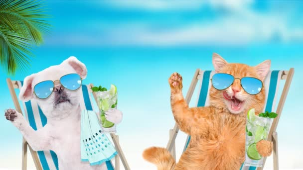 Cinemagraph - a macska és a kutya pihentető ül a nyugágyon és koktél a tenger a háttérben. Indítványt fotó.