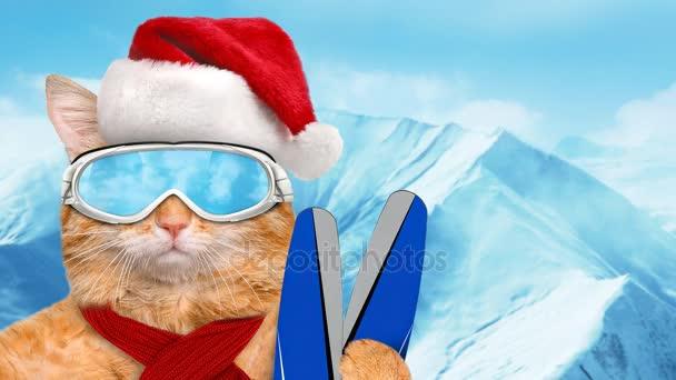 Cinemagraph - síelő macska a piros karácsonyi kalapot visel napszemüveg pihentető a hegy. Indítványt fotó.