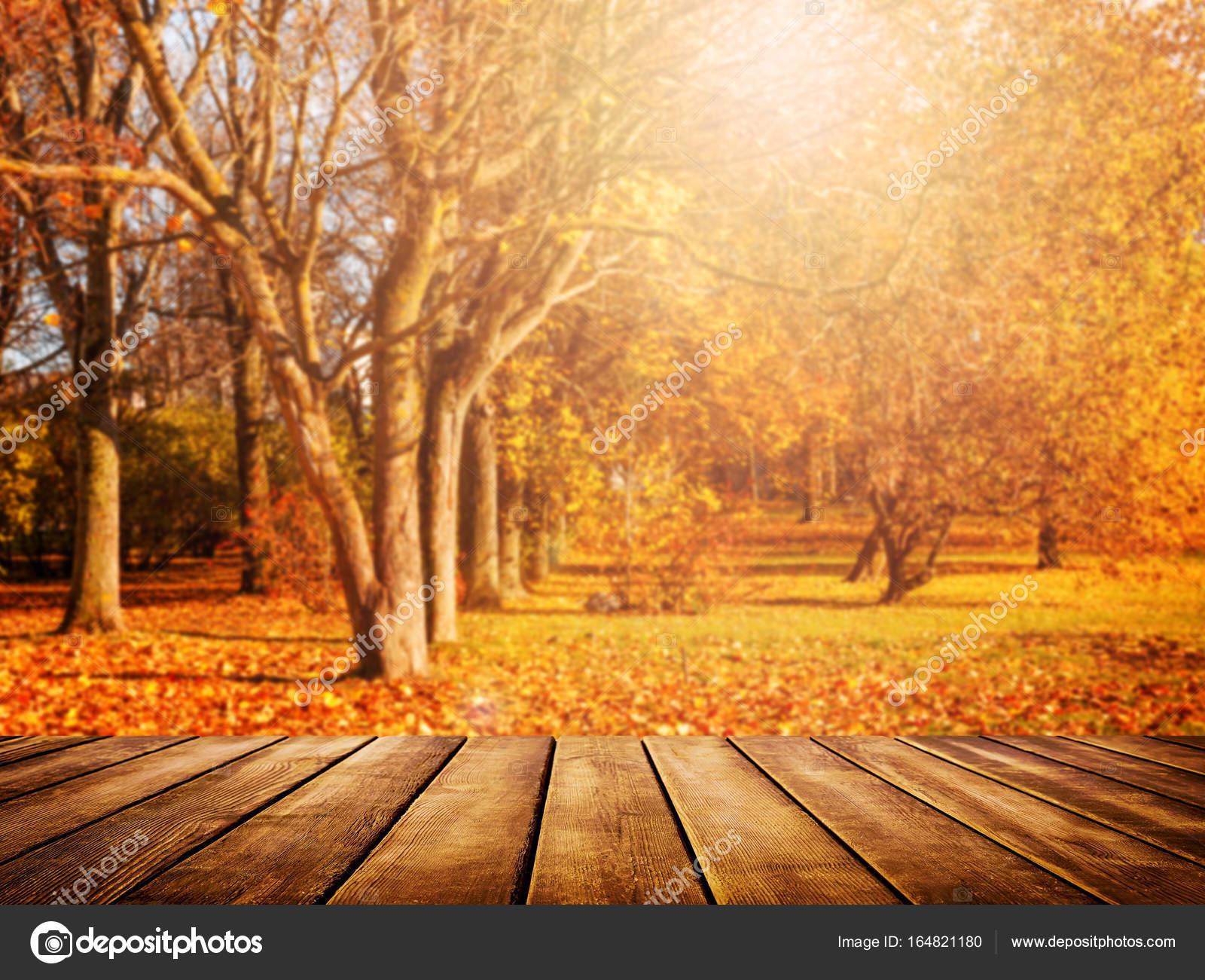 Vieux bureau en bois avec des feuilles dor fond automne