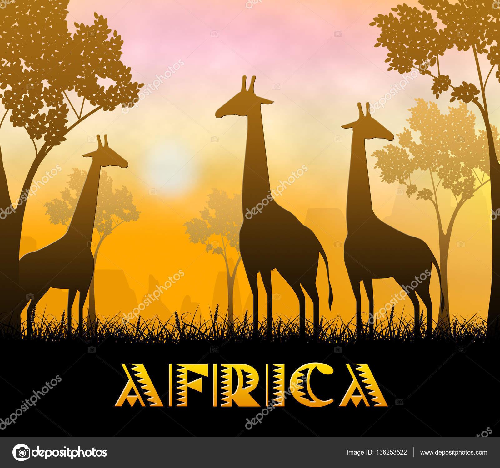 afrikai találat li összekapcsolás