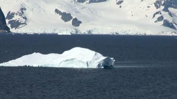 Kreuzfahrt in der Antarktis - Märchenlandschaft