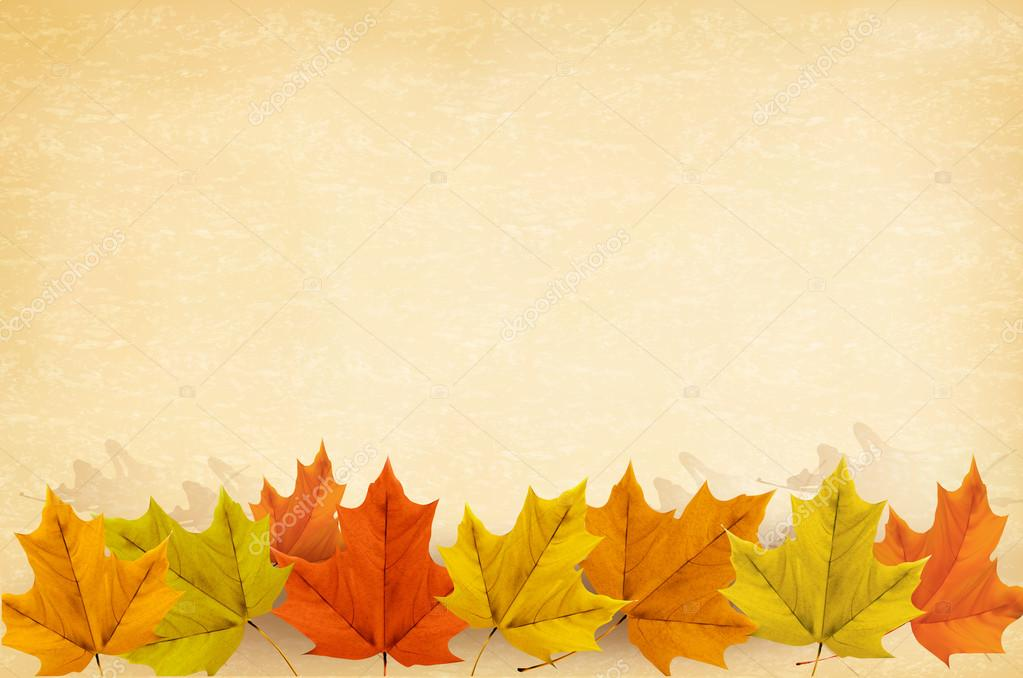 Autumn background with leaves and old paper. Vector illustration