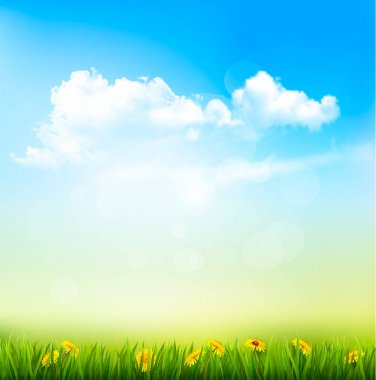Spring Nature Background With A Green Grass And Blue Sky With Cl